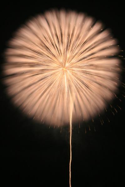 片貝の花火