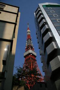 ビルの間から東京タワー