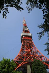 木々の中に東京タワー